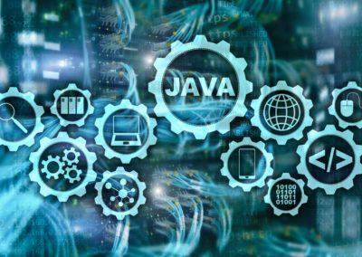 Programacion con Aplicaciones Orientadas a Objetos. 60 horas